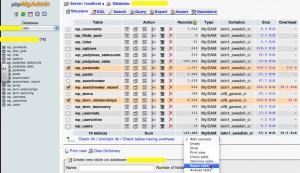 Wordpress(ワードプレス)のデータベースにアクセスする方法