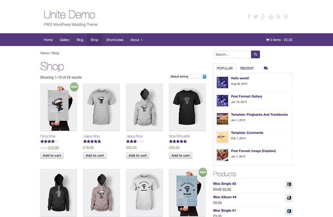 ecommerce-wordpress-themes